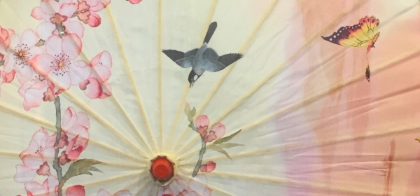 Chinese parasols with butterflies, birds, and plum blossoms